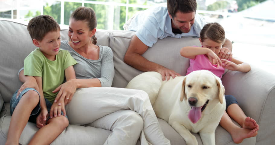 Cute Family Relaxing Together On The Couch With Their Dog In Living Room At  Home Stock Footage Video 5935778 | Shutterstock