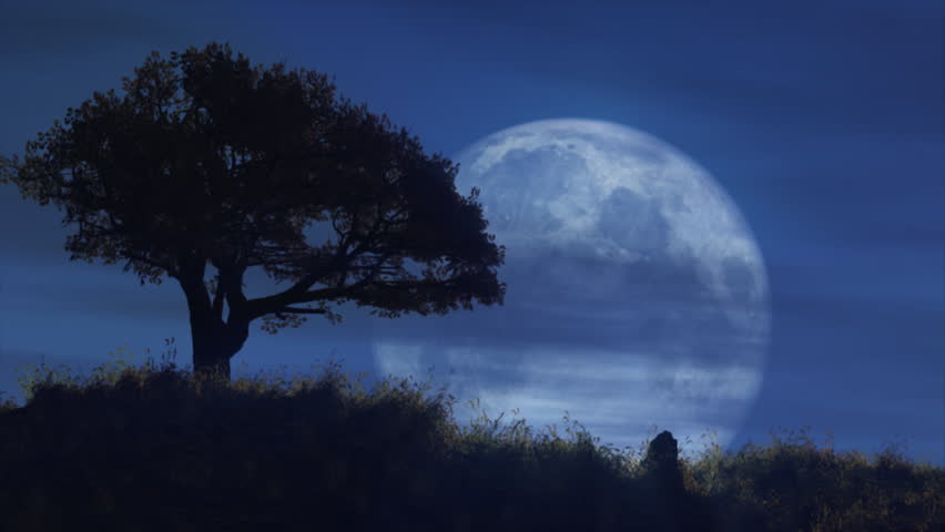 stock video of dismal moon night 595018 shutterstock
