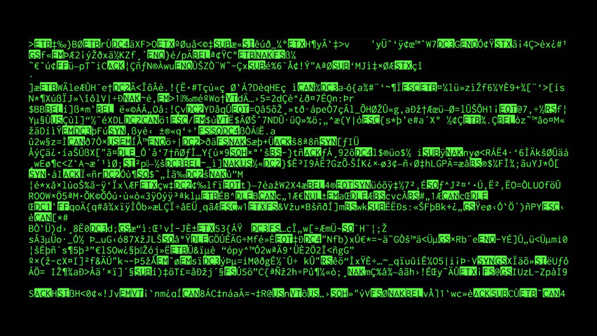 Image result for random computer program