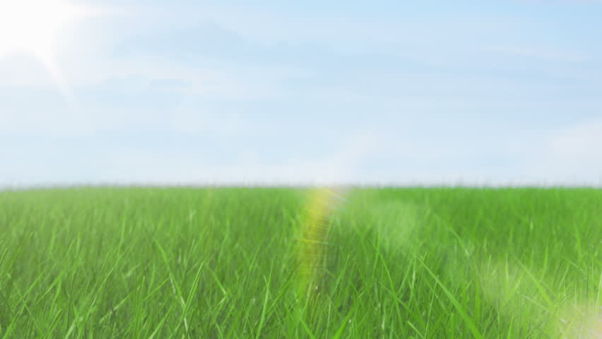 Green field and sky blue with white cloud. 1080 Seamless loop