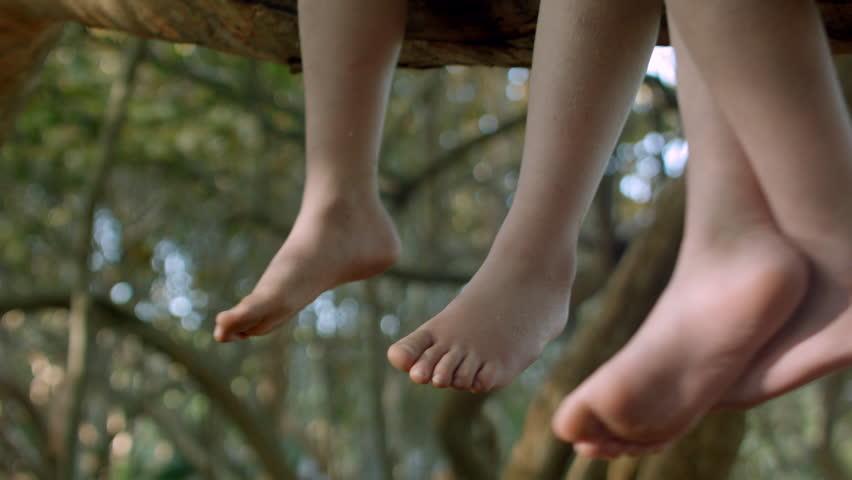 Two Kids Sit In A Tree, Closeup Of Their Feet Swinging In The Breeze | Shutterstock HD Video #6027239