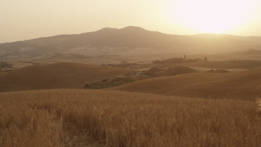 wheat fields of arabian deserts essay This domain is actually closed you can still find the best inspiration for your travels in.