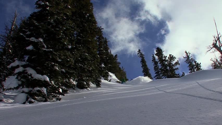 Tree silhouette shadow winter snow background landscape