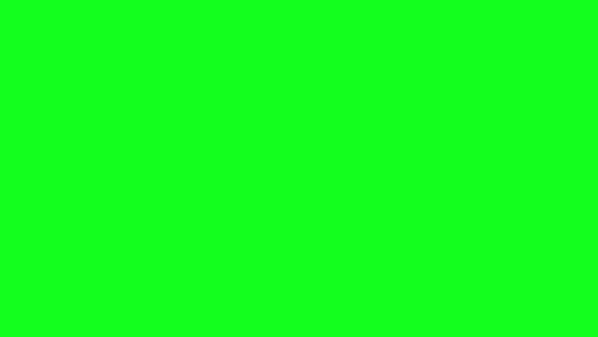 Three birds leave the frame from left on green screen.