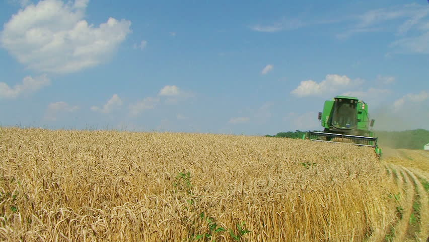 FALMOUTH - JUNE 23: Farmer (name withheld) from Falmouth, KY harvesting wheat crop on his farm June 23, 2009 in Falmouth, KY.