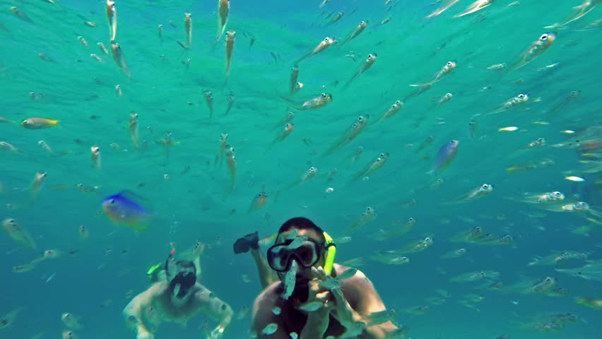 Two Men diving in coral reef. Underwater scene.