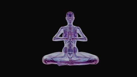 Yoga Body - Structure And Energy - I - Loop - 3D animation on metaphysical look of human body skeleton and muscle structure and energy at yoga practice as intro, background, illustration, decoration.