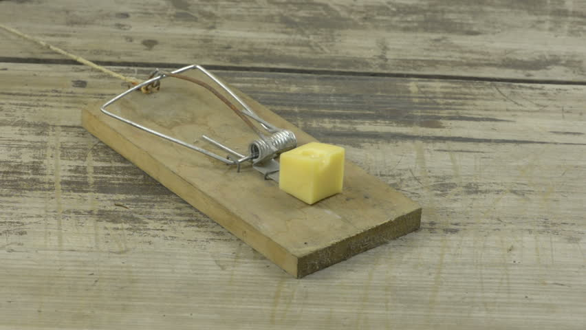 An animal trap, mousetrap or snare with some cheese when it is detonated.