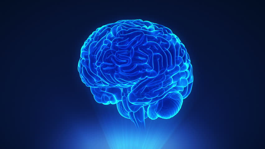 Right hemisphere in loop brain concept | Shutterstock HD Video #7482148