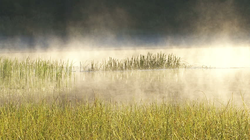 Fog On The Forest Mountain Morning Lake. Time Lapse HDR 1920x1080 ...
