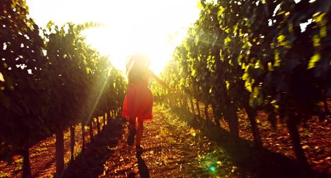Woman Running Joy Freedom Happiness Nature Sunset Achievement Concept