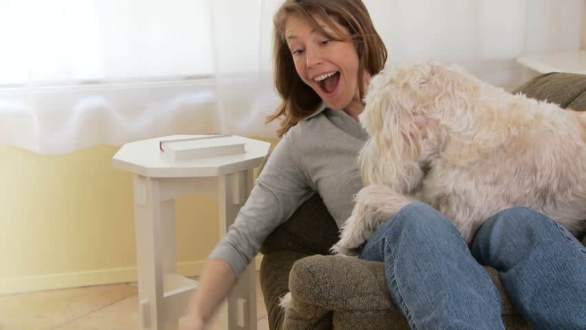 Young woman playing with dogs