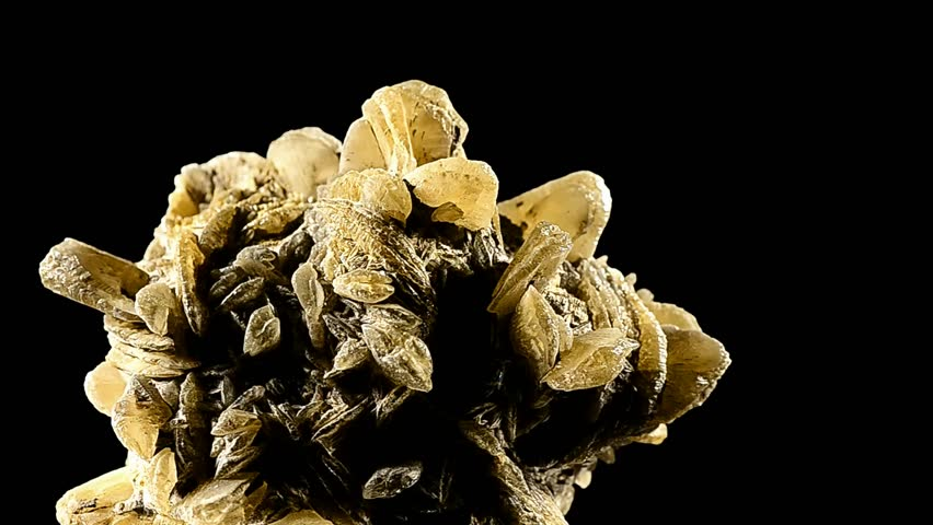 beautiful gypsum mineral rose and black background