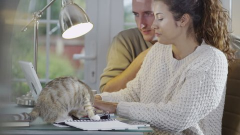 Young couple at home relaxing with their pet kitten in their home office.