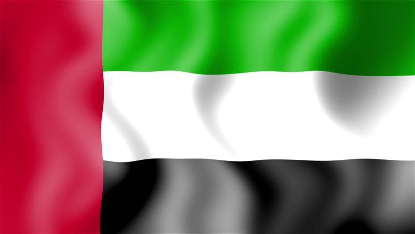Image result for abu dhabi flag