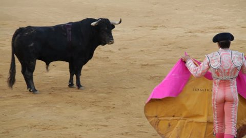 La Linea de la Concepcion, Spain - 19 July 2013: Spanish picador on horse and bullfighter in action during traditional bullfighting in Spain.