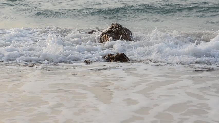 Ocean beach loop #8327308