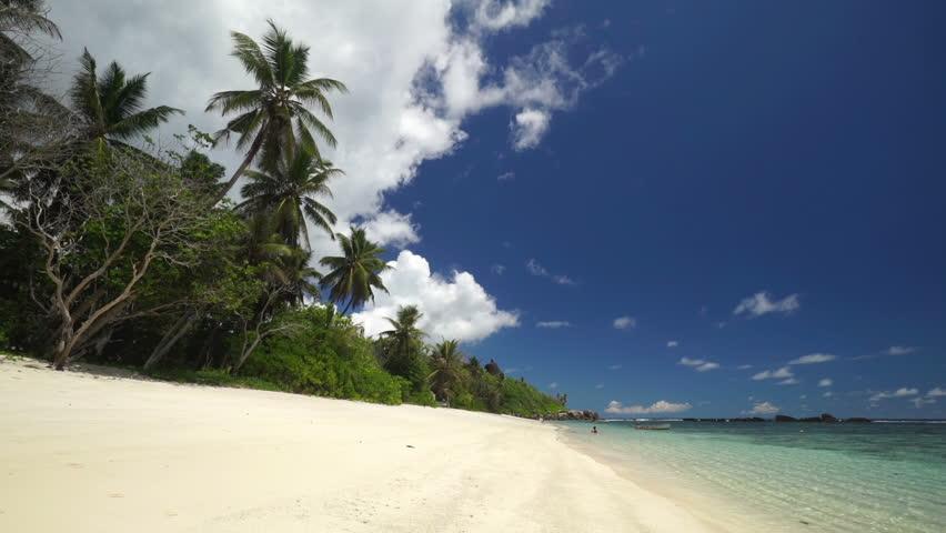 Sandy beach, palm trees and tropical lagoon  | Shutterstock HD Video #8473468
