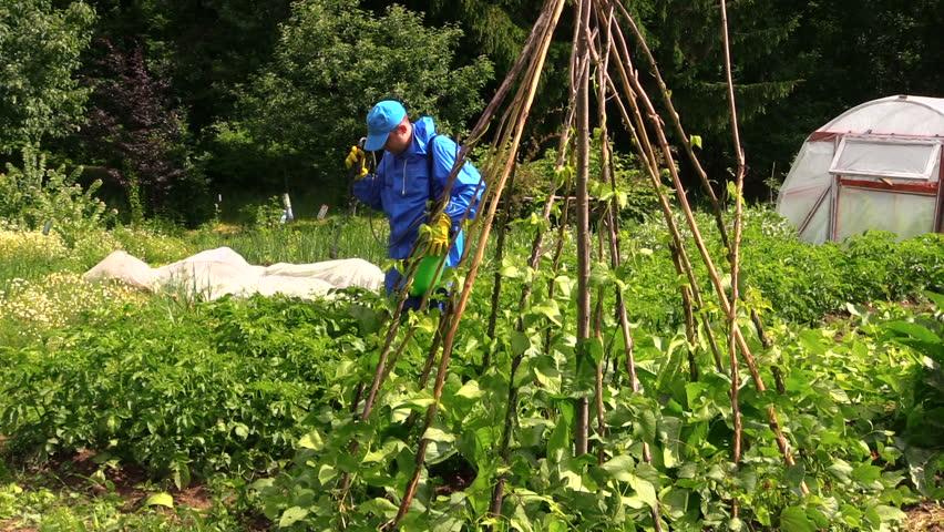 Garden Pesticides