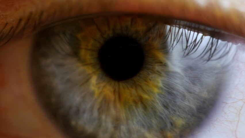 Close up and pan across of eyes looking in all directions. 4K UHD 2160p footage. | Shutterstock HD Video #9215288