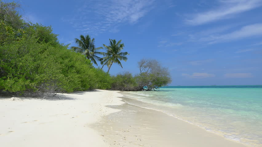Exotic white sand beach in Maldives island | Shutterstock HD Video #9322448