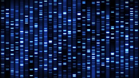 DNA Analysis Sequence Loop