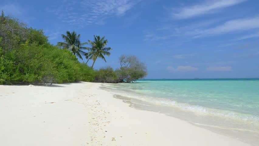 Exotic white sand beach in Maldives island | Shutterstock HD Video #9427118
