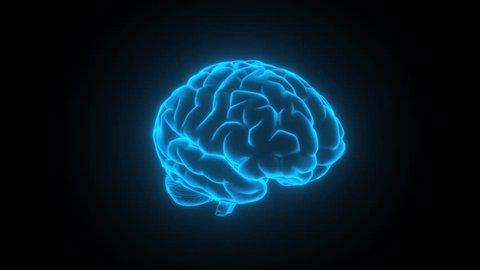 brain glowing blue