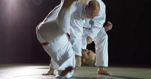 Two martial arts athletes during practice