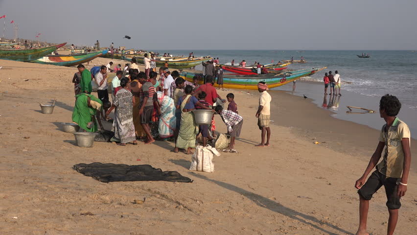PURI, INDIA - 3 DECEMBER 2014: People gather at the beach to buy freshly caught fish on a beach near Puri.
