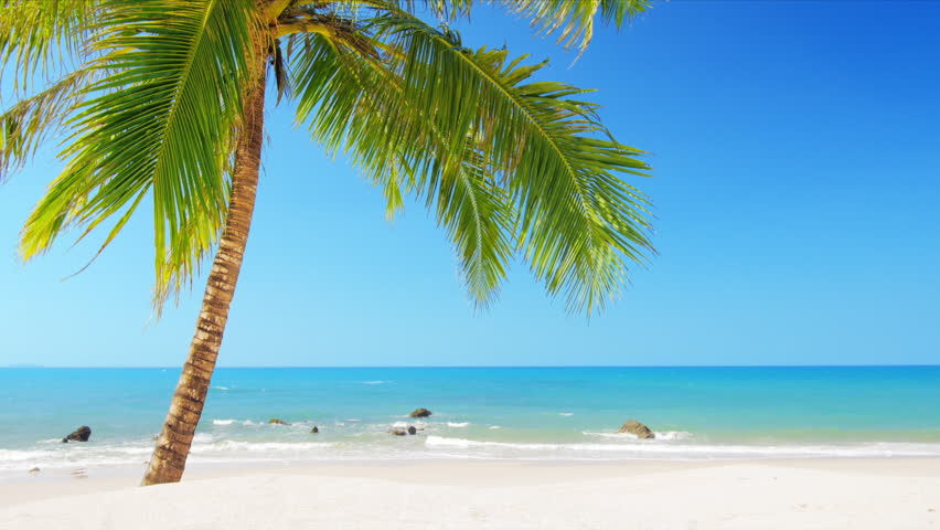 Idyllic Paradise Beach With White Sand Blue Sky Clean Water And Tropical Coconut Palm